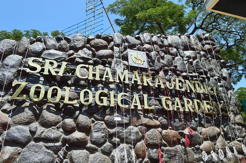 mysore-zoo (2)