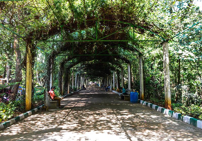 mysore-zoo (8)